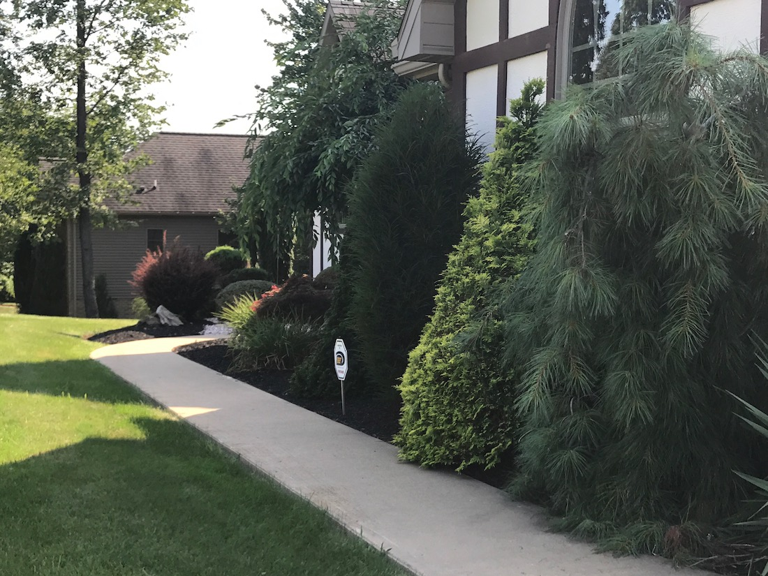 Home superior yardscapes indiana pa for Home landscaping services